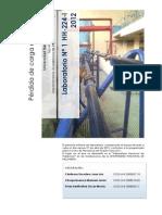 Pérdida de carga en tuberas Lab N1 2001-I