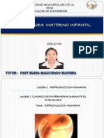 1 Ppt Virtual 1.1 Reproduccion Humananueva Plantilla (1)