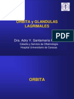 ORBITA Y GLANDULAS LAGRIMALES.ppt