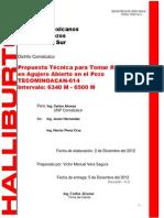 Programa Teco 614 Oh_etapa 4 1-8 Rev 1 0 (2)