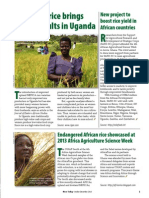Rice Today Vol. 12, No. 4 Improved rice brings mixed results in Uganda