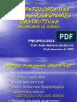 Po Fisiopat. Obstrutivas 2006 (1)