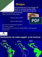 Ponencia Dengue