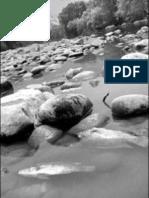 El Río Apatlaco