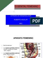 APARATO GENITALFEMENINOterminadototal