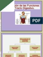 Clase-12.15 Regulación de la Función Motora del Tracto Digestivo