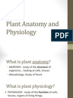 Plant Anatomy and Physiology