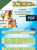 Taller de Frutas y Hortalizas