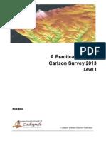APG Carlson Survey 2013 L1 TOC Sample