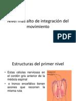 Sitema Motor