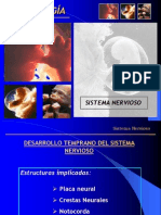 Sistema Nervioso Clase (2)
