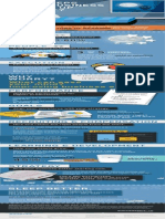 Ceo Exec Infographic