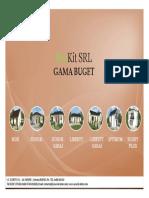 catalog case ppt buget