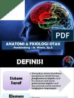 Ppt Anatomi Otak Ziad