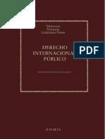 52924504 Moncayo Vinuesa Gutierrez Posse Derecho Internacional Publico