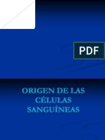 _Semiología
