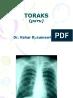 Toraks (Paru)