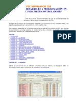 Simulador de Pic