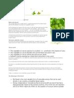 biodiesel overview