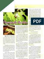 Organically Healthy