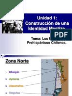 Pueblos Originarios de Chile 2