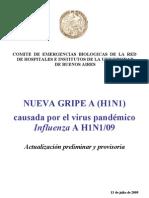 GRIPEAH1N1-130709