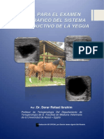 Guia Examen Ecografico Reproductivo Yegua