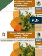 México ante las enfermedades de importancia curentenaria - Héctor Sánchez Anguiano