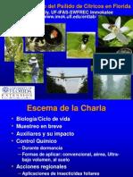 Stansly ACP_Jul09 Espanol