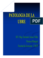 Patologia de La Ubre