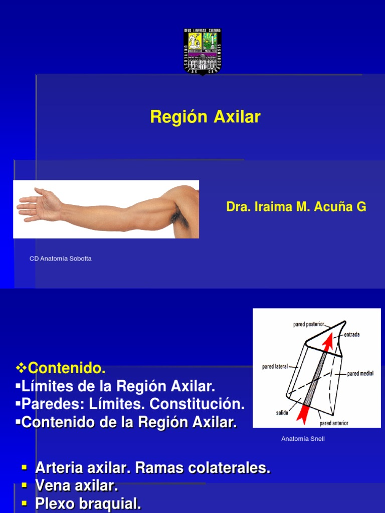 Region Ax Ilar