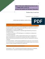 Gino Cavani - Técnicas estructurales dirigidas hacia el cambio relacional - Síntesis y relaciones del modelo de Salvador Minuchin