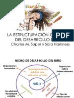 LA ESTRUCTURACIÓN CULTURAL DEL DESARROLLO DEL NIÑO
