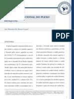 2013-05!18!181739_anatomia Funcional Do Plexo Braquial j Mauricio