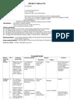 Proiect Didactic- Culturi Tehnice Clasa Ix