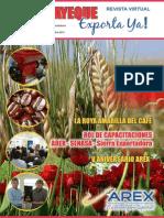 """Revista Virtual """"Lambayeque Exporta Ya"""" - Edic. 6 - setiembre 2013"""