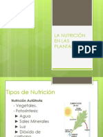 nutricion-091001045757-phpapp01
