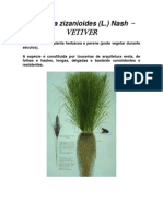 Poder Medicinal Do Vetiver