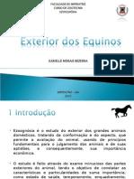 Exterior de Equinos