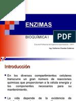CLASE 6 ENZIMAS