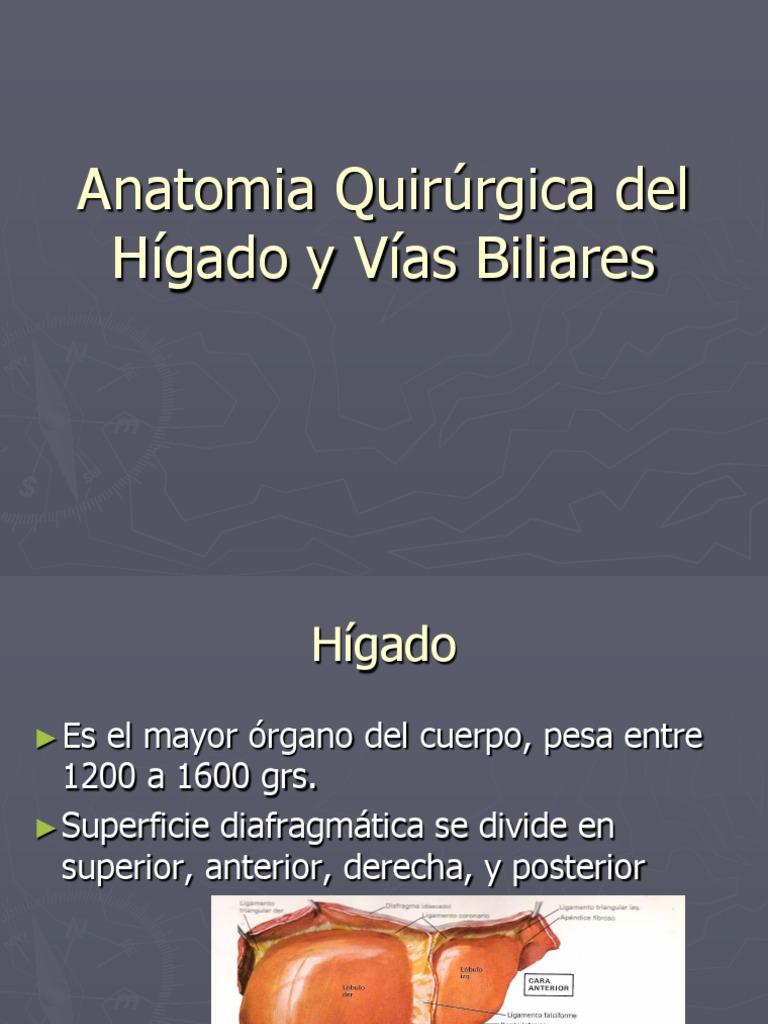 Anatomia quirurgica del Hígado y Vias biliares
