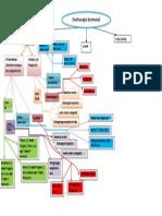 Pr Concept Map