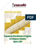 Cultivo de Maíz en guate.