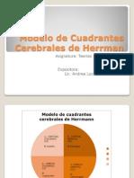 Modelo de Cuadrantes Cerebrales de Herrman Exposicion