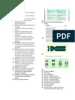 Meiosis-.Resumen Bio 12