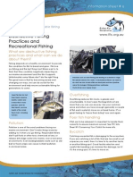 6 Destuctive Fishing Web