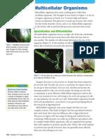6.4 Multicellular Organisms