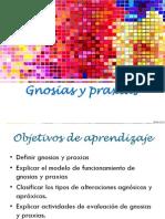Gnosias y Praxias