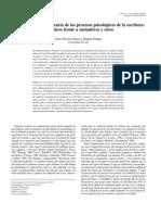 Garcia_Fidalgo_2003 - Conciencia Procesos Psicologicos Escritura