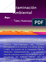 contaminacinambiental-130415195731-phpapp01